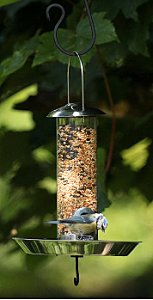 Feeder for fledgling birds