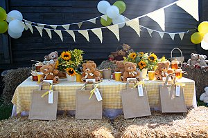 Teddy Bear Party Theme