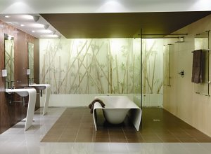 A Novel New Design In Wet Rooms From C P Hart