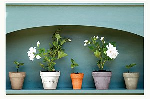 The Farrow & Ball's New Colours For Exterior Use