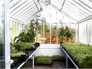 Let Griffin Glasshouses Help You 'Grow Your Own'