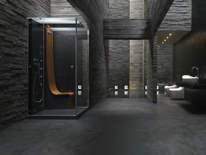 New From Jacuzzi The Morphosis Omega Steam Cabin