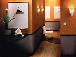 Lutron's Dimmers Offer Greater Control And Sleeker Looks